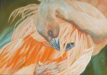 Flamingo by Anne Petschuch