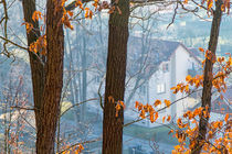 Haus im Wald by mnfotografie