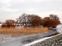Eiskaltes Fußbad von voelzis-augenblicke