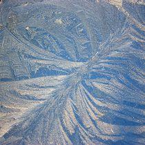 Eisblumen - Eiskristalle  von Martina Lender-Frase
