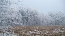 Winterhauch von Stephan Gehrlein