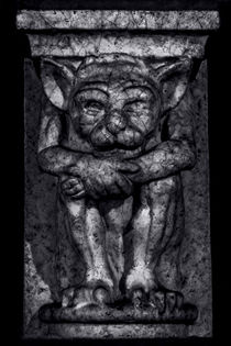 Gargoyle Portrait 1 by James Aiken