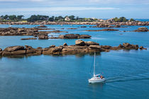 Rosa Granitküste in der Bretagne bei Ploumanach von Rico Ködder