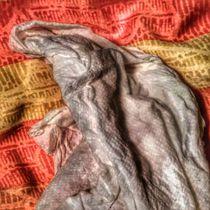 Erkältungsfolgen by Oliver Schleyer
