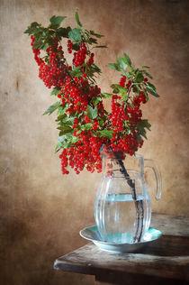Rote Johannisbeere von Nikolay Panov