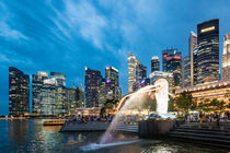 THE MERLION by hollandphoto