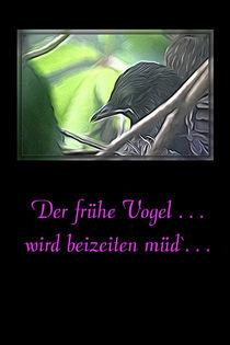 Der frühe Vogel . . . wird beizeiten müd`. . . by mario-s