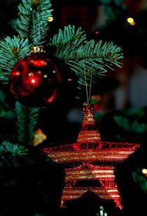 weihnachtsstern von Edmond Marinkovic