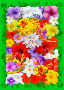 Exotic Flowers Colorful Explosion  by bluedarkart-lem