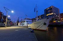 Hamburg Museumshafen von Borg Enders