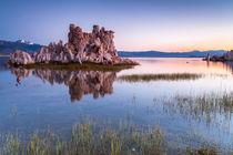 Mono Lake by Florian Westermann