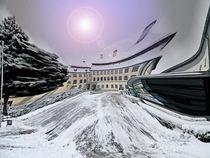 Ansicht auf Schloss Grosslaupheim  von Michael Naegele