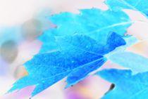 deep blue... by loewenherz-artwork