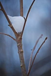 Winterzauber... 2 by loewenherz-artwork
