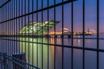 Zaun Dockland by Tobias Meslien