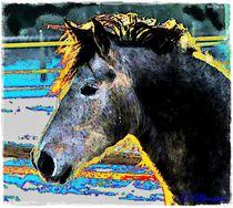 Colorful Art Horse von Sandra Vollmann