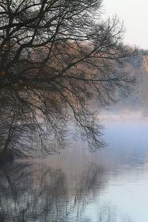 Spiegelung im Nebel von Bernhard Kaiser
