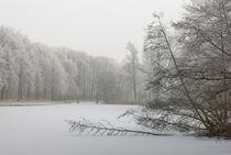 icebound by Erik Mugira