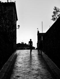 Silhouette von Renato  van Ray