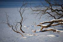 frozen lake... 2 by loewenherz-artwork