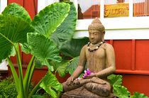 ALOHA-BUDDHISM by Sylvia Seibl