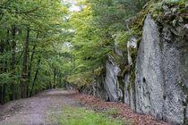 Wandern im Schiefergebirge by Ronald Nickel