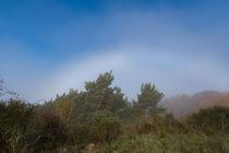Zwischen Nebel und Sonnenschein by Ronald Nickel