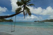 Swing on a coconut tree - Seychelles Islands von Stephan Kurrle