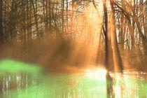 Sonnenlicht am Fluss von Bernhard Kaiser