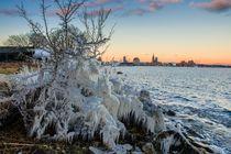 Baum aus Eis von Tino Schmidt