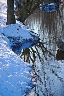 winterliche Flusslandschaft... by loewenherz-artwork