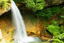 Scheidegger Wasserfall by Sylvia Seibl