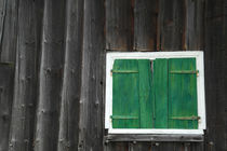Old wooden house with green shutter by stephiii