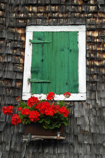 Old wooden house with green shutter andflowers by stephiii
