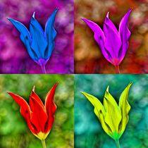 Pop Art Tulpenblüte von kattobello