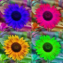 Pop Art Sonnenblume von kattobello