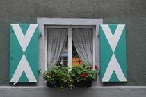 Fensterladen mit Blumen von stephiii