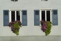 Zwei blaue Fensterläden mit Blumenkästen von stephiii