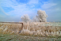 Frostige Winterlandschaft by ropo13