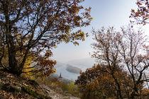 Herbstliche Nebel verklären noch das Rheintal by Ronald Nickel