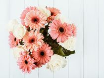 Pink Gerbera Daisy Flowers And White Roses Bouquet by Radu Bercan