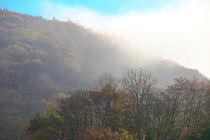 Herbstmorgen von Bernhard Kaiser