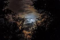 Nacht der Vampire von ropo13