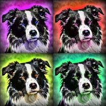 Pop Art Border Collie 2 by kattobello