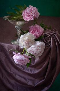 Pfingstrosen auf Rosa von Nikolay Panov