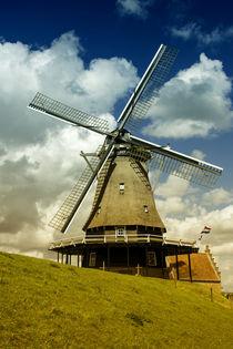 Medemblik mill  by Rob Hawkins