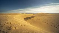 The Dunes  von Rob Hawkins