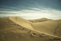 'The Sand Dunes of Maspalomas ' by Rob Hawkins
