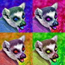 Pop-art Katta Kollage by kattobello