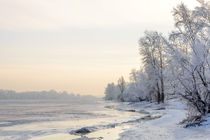 'Trees covered by frost, ice and snow close to the Dnieper River' by maxal-tamor